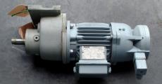 AMK RDE56/2 1:60 Gearmotor