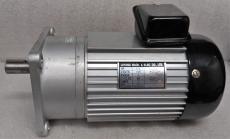 Luyang 1/3 HP AC Gear motor